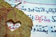 KUR'AN VE BİZ, 30 REBİÜLEVVEL 1435 (31 OCAK 2014)